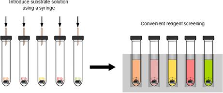 Kitalysis Evoluchem Process